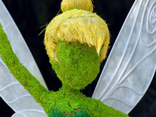 disneyendlessmagic:  Tinkerbell by disneylori on Flickr.