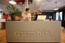 jacksgap:   Hanging out at Tumblr HQ with @finnharries