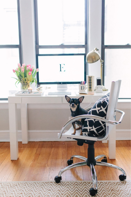 theeverygirl:  the perfect little Chicago office space