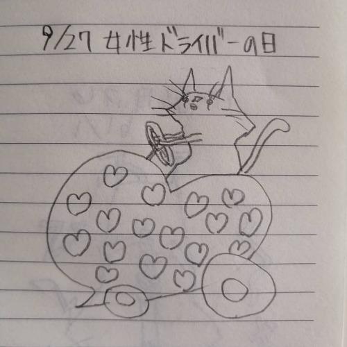 Фото породы Британская короткошерстная кошка