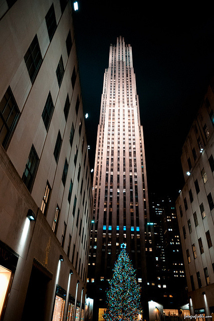 The Rock on Flickr. The Rockefeller building dwarfs a very tall Christmas tree at the Rockefeller Center, NYC.