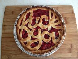 larastonesboobs:  I'm gonna bake this pie and throw it at my finals