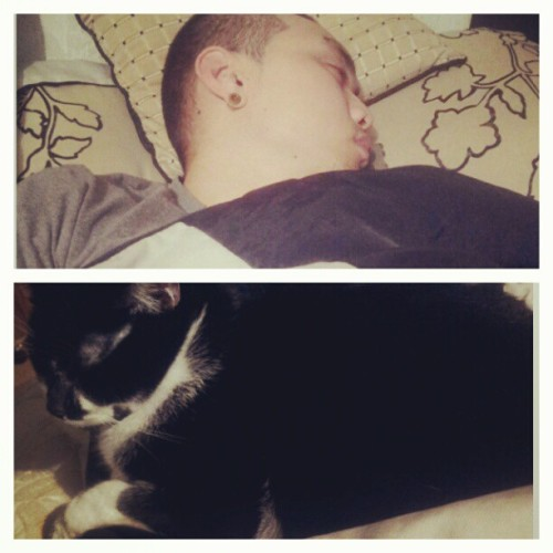 My two sleepyheads. Wasn't I the one with the long day at work @oh_boy_tee88 ?? #naptime #boyfriend #cat #love