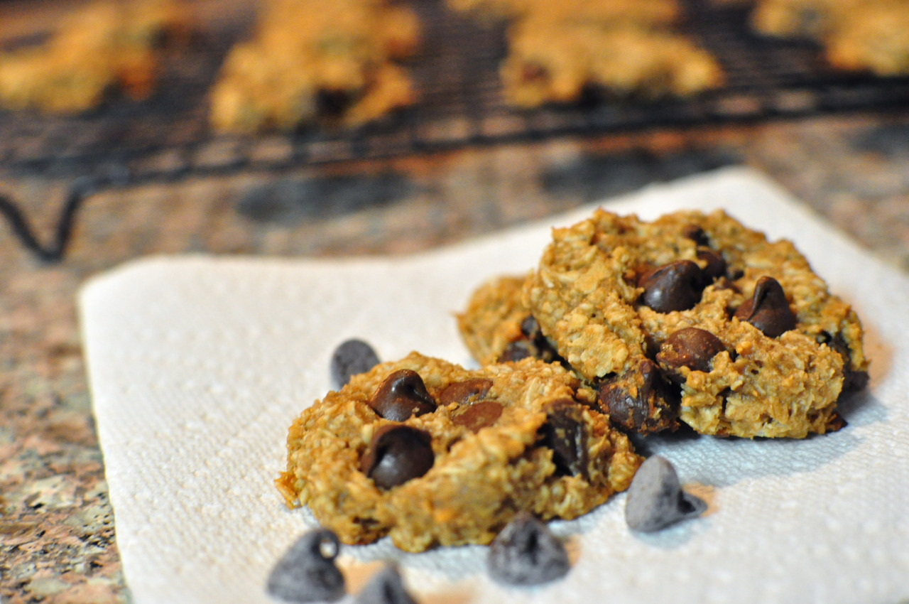 Healthier Peanut Butter Banana Chocolate Chip Oatmeal Cookies[[MORE]] — There are some days when I want to enjoy sugary treats, but without the guilt. These cookies a healthier way to satisfy that sweet tooth, but with just as much flavor!  These cookies are soft and chewy and with just the right amount of sweetness. You will love the peanut butter and banana flavors combined with the chunks of chocolate in these cookies!    Healthier Peanut Butter Banana Chocolate Chip Oatmeal Cookies 1/2 cup peanut butter 1/2 cup brown sugar  2 cups quick cooking oatmeal 1/2 cup mashed banana 3/4 cup chocolate chips 1/2 cup plain greek yogurt  — Preheat the oven to 350 degrees F. Grease and line a large baking sheet. In a bowl, combine the peanut butter, brown sugar, oatmeal, mashed bananas, chocolate chips, and yogurt. Stir until a dough forms. Scoop dough onto the baking sheet by the heaping tablespoonful. I like to use a medium ice cream scoop. Press down the dough to flatten. The dough will not spread much in the oven. Bake at 350 degrees for about 8 to 10 minutes. Cool and enjoy! Makes 1 1/2 dozen large cookies.    Nutrition Facts  Per Cookie: Calories: 150 Fat: 6g Carbohydrates: 23g Protein: 4g