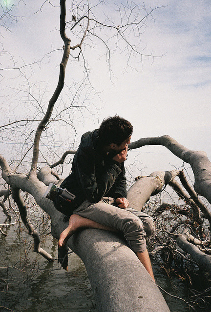 restaurer:  untitled by emily burtner on Flickr.