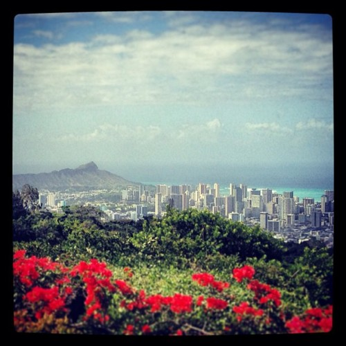 Beautiful view on #Oahu! #gohawaii — photo taken by gohawaii