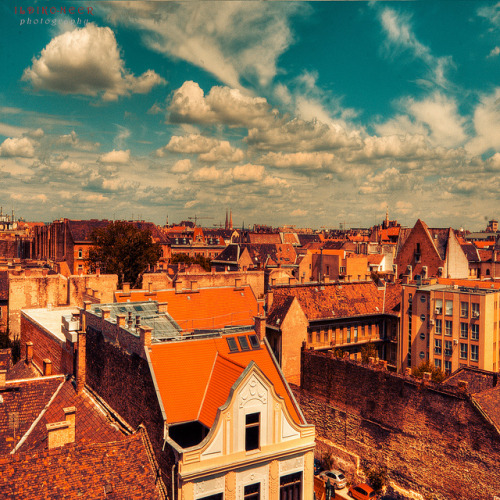 over the roofs - EXPLORED 07/07/11 by ildikoneer on Flickr.