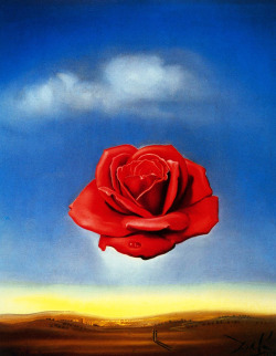 unlessyougo:  Salvador Dali - Meditative Rose 1958