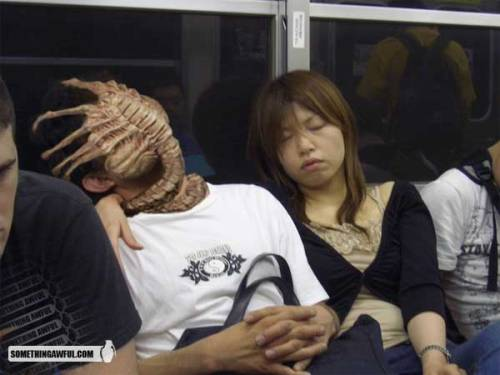 wilburwhateley:  Don't fall asleep on public transportation.