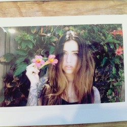 #instax by @traviscody asst.  @sincerelyrambo #film #sunny #flowers #nature #instagood #picoftheday