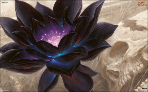 mtgfan:  The Black Lotus is a highly sought after card in Magic the Gathering's history, valued in the thousands of dollars for a single copy. Here, the original art has been re-imagined by artist Chris Rahn. Get your wallpaper of the Black Lotus here.