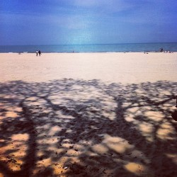 Hollywood Beach (at Kathy Osterman (Hollywood) Beach)