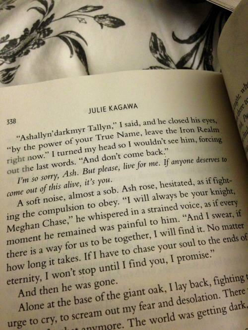 "fortheloveofbooksandglory:  ""I will always be your knight, Meghan Chase. And I swear, if there is a way for us to be together, I will find it. No matter how long it takes. If I have to chase your soul to the ends of eternity, I won't stop until I find you, I promise."" - Ash, The Iron Queen"