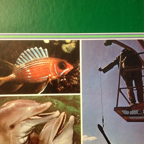 Life aquatic inspiration books