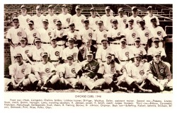 1946 Chicago Cubs TeamThe '46 Cubs still managed to get to a respectable 82-71 record despite hitting only 56 home runs (although probably helped by the pitching staff's 3.24 ERA).
