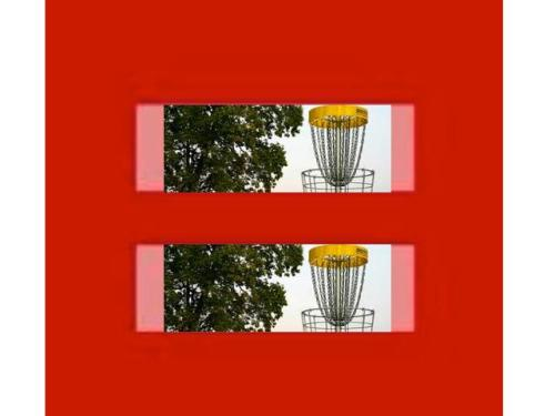 ONE DAY IN THIS COUNTRY, ALL GAY DISCGOLF PLAYERS WILL BE ABLE TO GET MARRIED