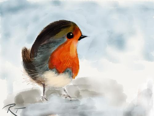 "madewithpaper:  ""‎…invited to my bird feeder"" by Renate Tillmanns in Krefeld, Germany via Facebook"