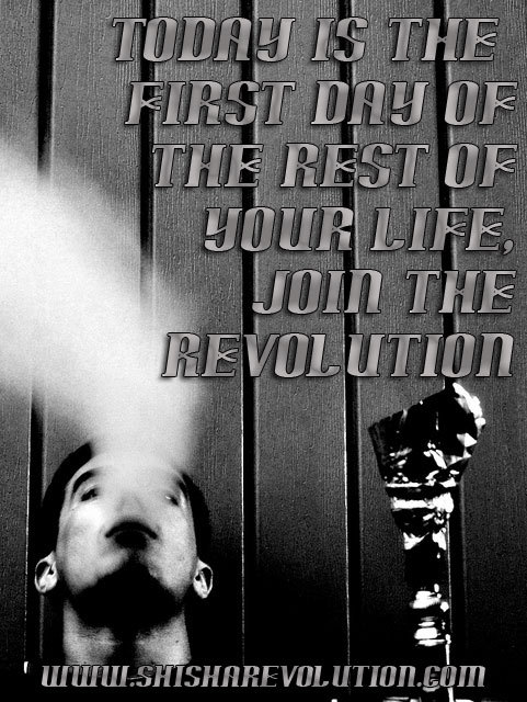 http://www.shisharevolution.com Get free shisha samples for members.  It is free to join. .
