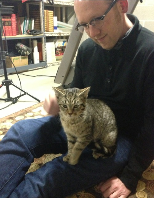 allikazoo:  craigcalcaterra:  New kitty. Her name is Fran, we have decided.  meet Fran!