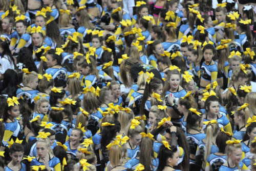 cheerforyourlives:  bigyellowbow:  A sea of yellow bows :D*Richard A. Martin Photography*  I SEE MYSELF  We're the OC. Now you know