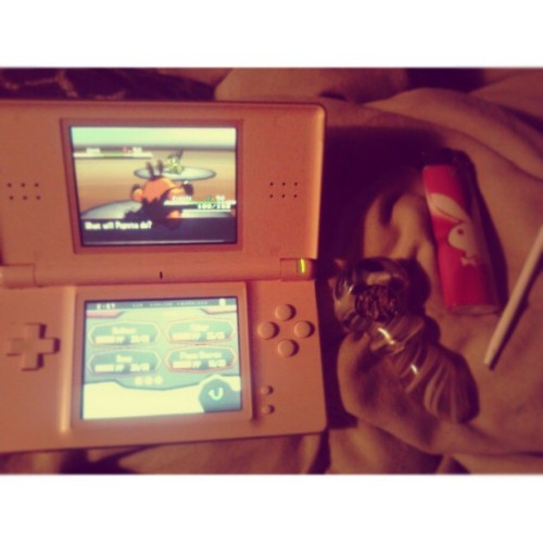 #tbt #bowl #weed #pokemon #pokémon #pokemonblack #pokémonblack #pignite #lighter #bic #playboy #throwback #throwbackthursday #pink #pinkds #ds #nintendods #girlswhosmokeweed #girlswhoplaypokemon