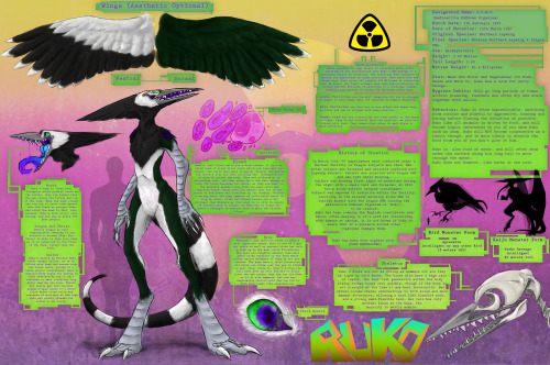 Ruko's Massive Reference Sheet by ~RadioactiveBirds