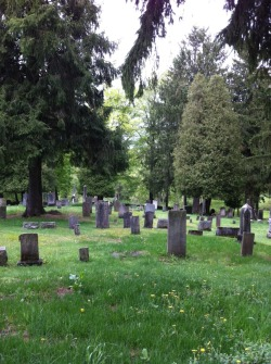 inflections-and-innuendos:  A peaceful cemetery.  Picture from my 2013 Family Reunion (I'm related to pretty much everyone in this cemetery)