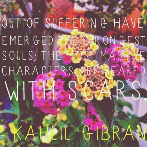 Out of suffering have emerged the strongest souls; the most massive characters are seared with scars. - Kahlil Gibran #qotd #quoteoftheday #instaquote #fortheloveofquotes #kahlilgibran #lantana #lantanacamara 💐