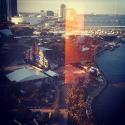 Ultra from my hotel room can't wait till tomorrow