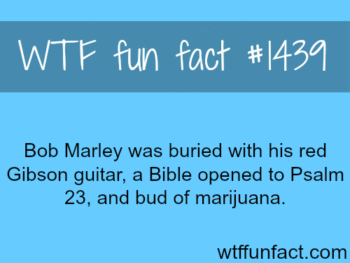 wtf-fun-factss:  Bob Marley's Gibson guitar, some say he was buried with a soccer, and his ring from the princes of Ethiopia   WTF FUN FACTS HOME  /  See MORE TAGGED/ people/celebs FACTS (source)