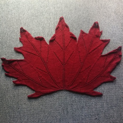 knitting shawl knitting zenyarngarden maple leaf shawl Canada150 I am Canadian!