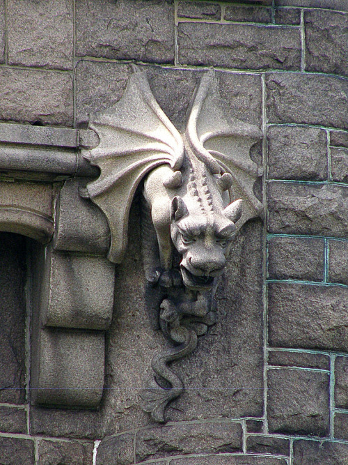 darkface:  Watching over things at Oakwood Cemetery! (by tamielise  )