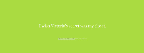 I Wish Victorias Secret Was My Closet Facebook Cover