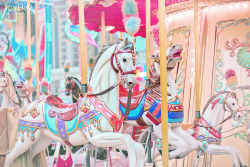 alternativepurple-carousel-horses