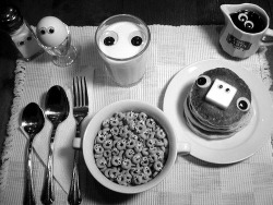 c-inere:  my breakfast is watching you