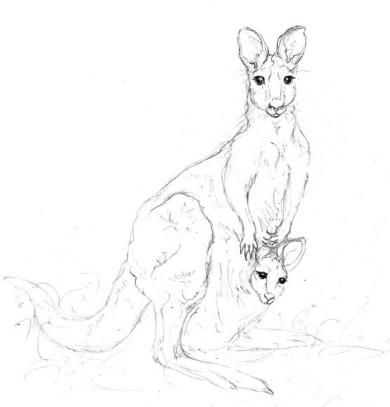 Kanga Sketches: bright eyes on Flickr.