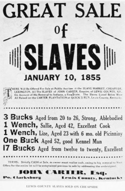 soulbrotherv2:  Great sale of slaves, January 10, 1855.
