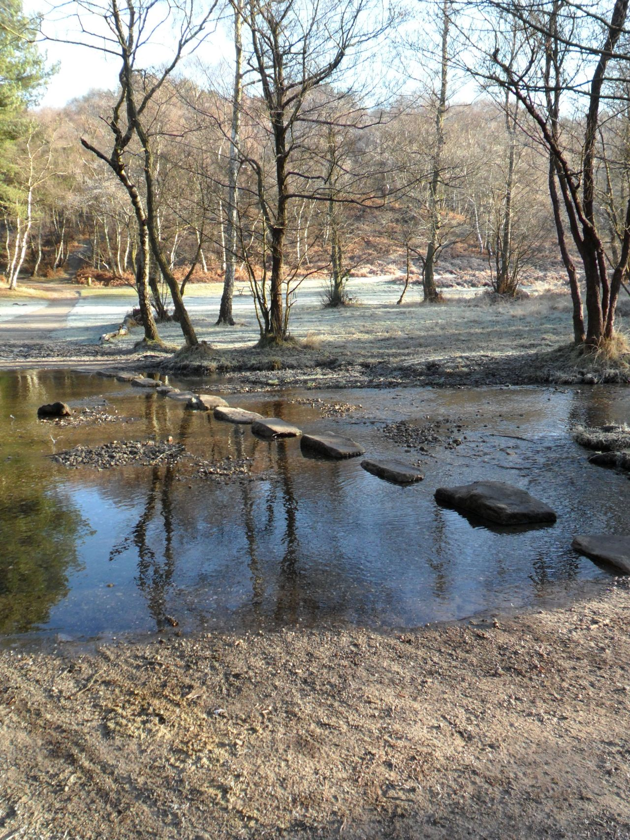 Stepping Stones on a frosty morning at Cannock Chase, Staffordshire, England.