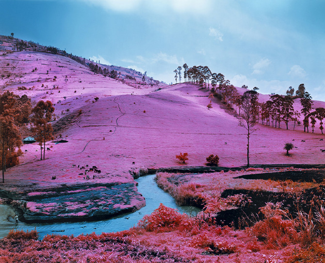 pantherclub:  Stunning infrared images of the Congo from Irish photographer Richard Mosse