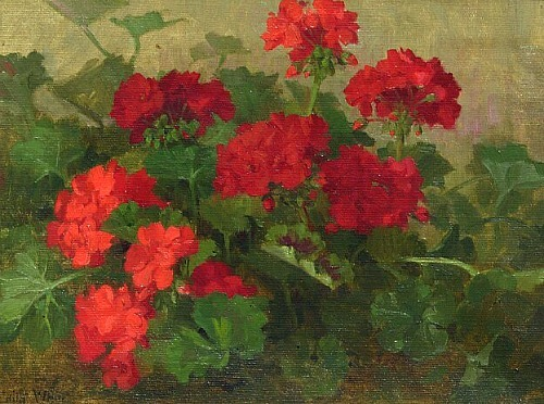 stilllifequickheart:  Edith White Still Life with Geraniums 20th century