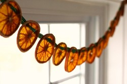 prettylittlepieces:  Orange Garland