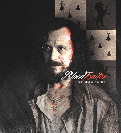 terrierchasingotter:  THE MAGIC BEGINS↳ [17] Favorite marauder → Sirius Black