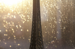 kaylinr:  Rain In Paris by Sorin B. on Flickr.