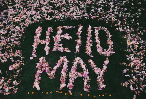 spiritguide:  Hello May - 291/366 (by Glenda Lissette)