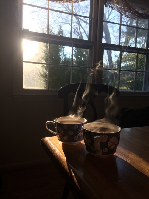 tea tea cups steam light filtered light sun sunlight tea time afternoon tea tea for two green tea jasmine jasmine tea constant comment fresh brews flowers beauty window sky peace thoughts reflection warmth cold