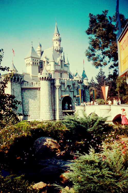 Disneyland- Summer of 1960