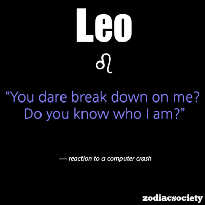 zodiacsociety:  Leo reaction to a computer crash