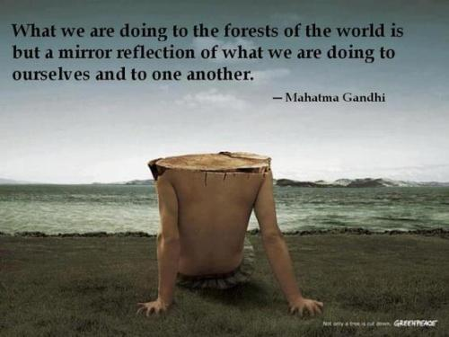 """What we are doing to the forests of the world is but a mirror reflection  of what we are doing to ourselves and to one another."" - Mahatma Gandhi"