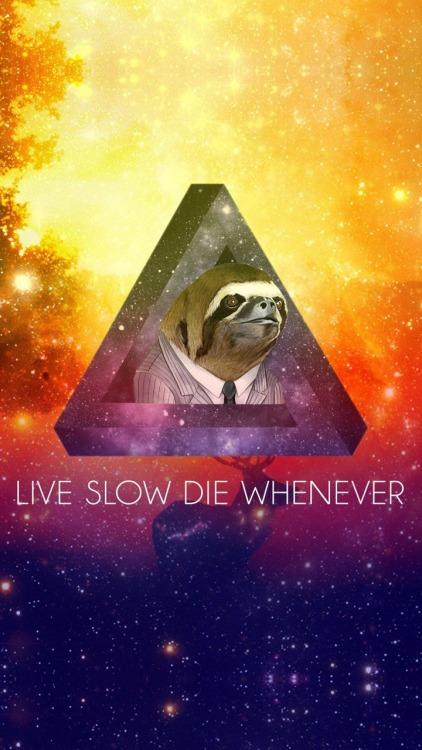 Sloth wallpaper tumblr - Sloth wallpaper phone ...