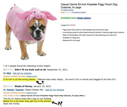 collegehumor:  Angry Amazon Reviews of Adorable Dog Costumes [Click for more] This is all 100% real… especially the misery on their faces. Actually, the cowboy looks fun.